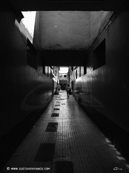 vivanco 01